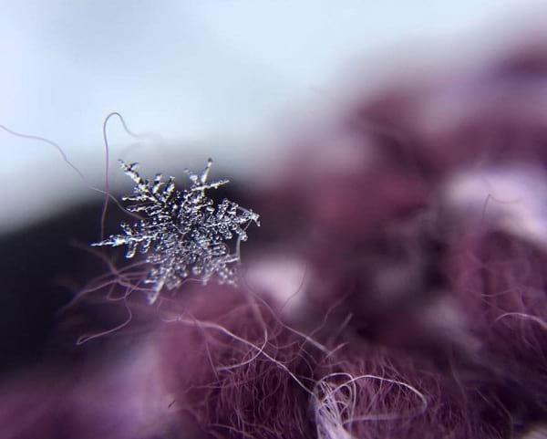 دانه های برف (5)