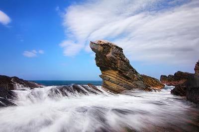 صخره هایی شبیه حیوانات (11)