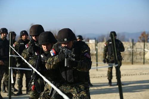 نیروهای ارتش دنیا (8)