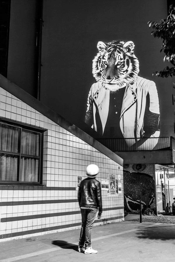 Le Tigre des Amandiers