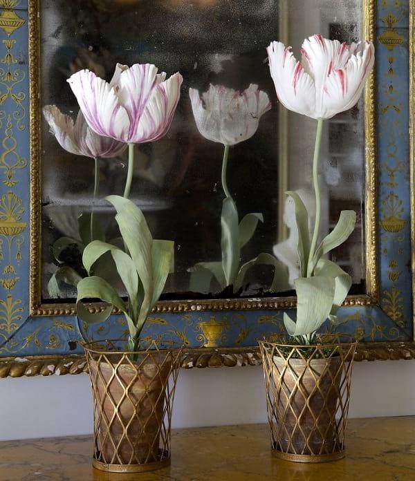 گل های چینی