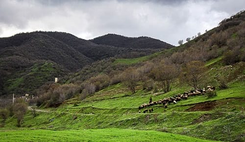 اردیبهشت در کرمانشاه (21)