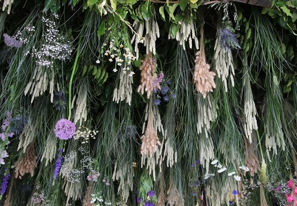 نمایشگاه گل (11)