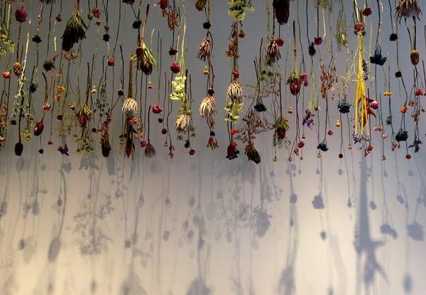 نمایشگاه گل (7)