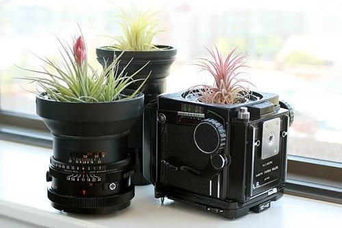 دوربین قدیمی (4)