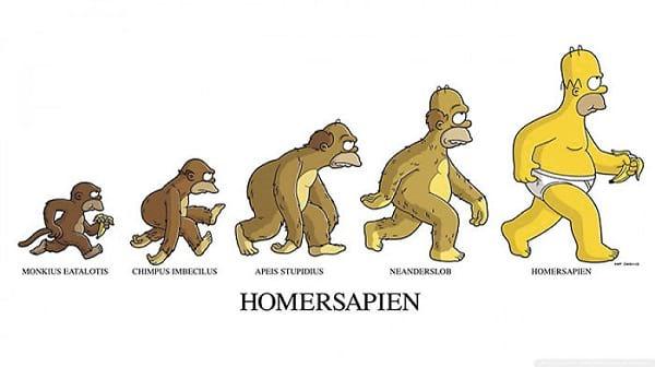 نظریه تکامل (2)