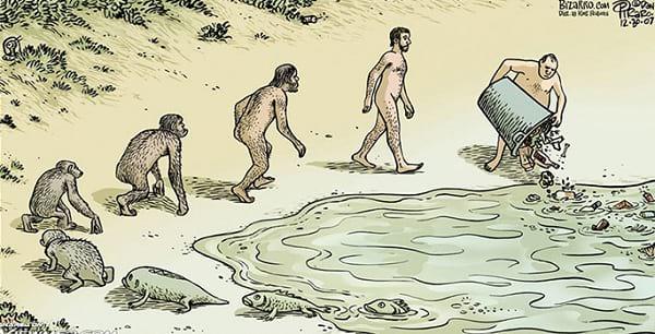 نظریه تکامل (6)