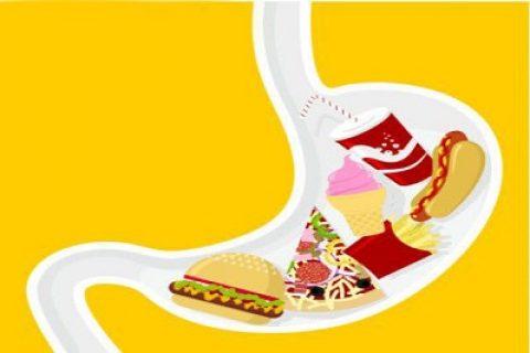 توقف مواد غذایی مختلف چقدر در معده طول میکشد؟