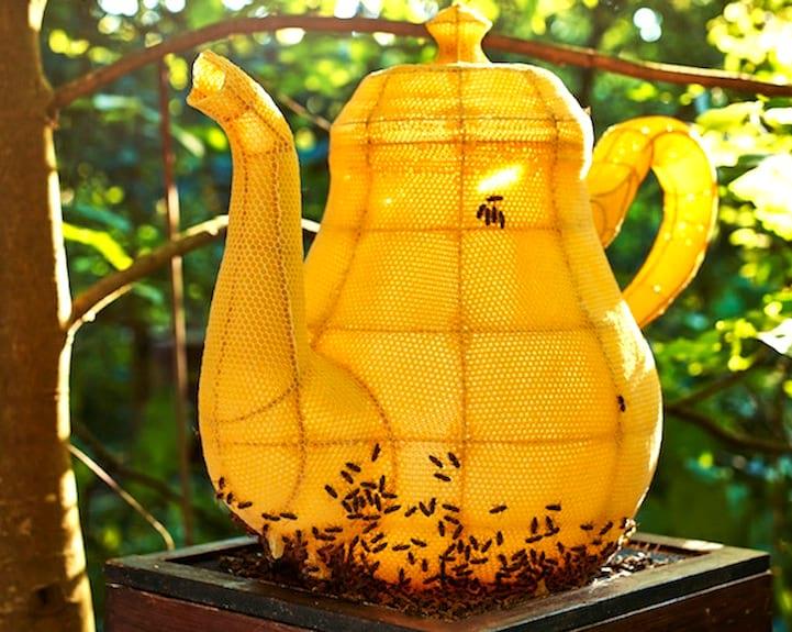 زنبورهای هنرمند (1)