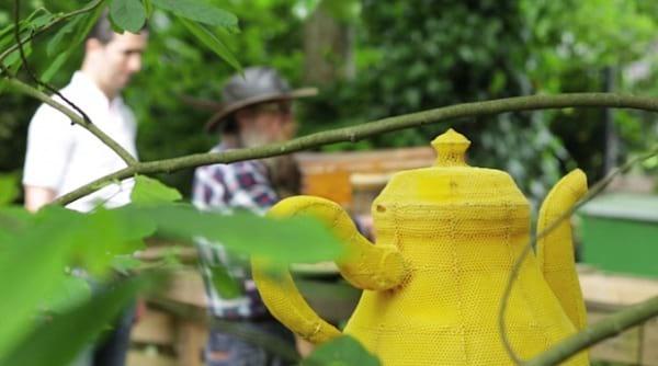 زنبورهای هنرمند (44)