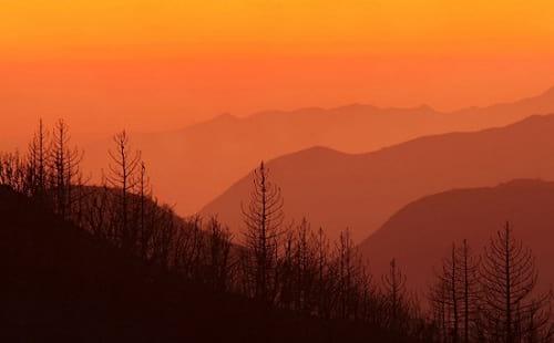 زیبایی آتش سوزی (2)