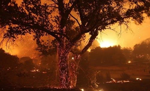 زیبایی آتش سوزی (3)