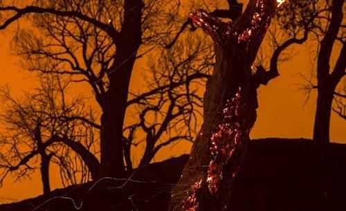 زیبایی آتش سوزی (9)