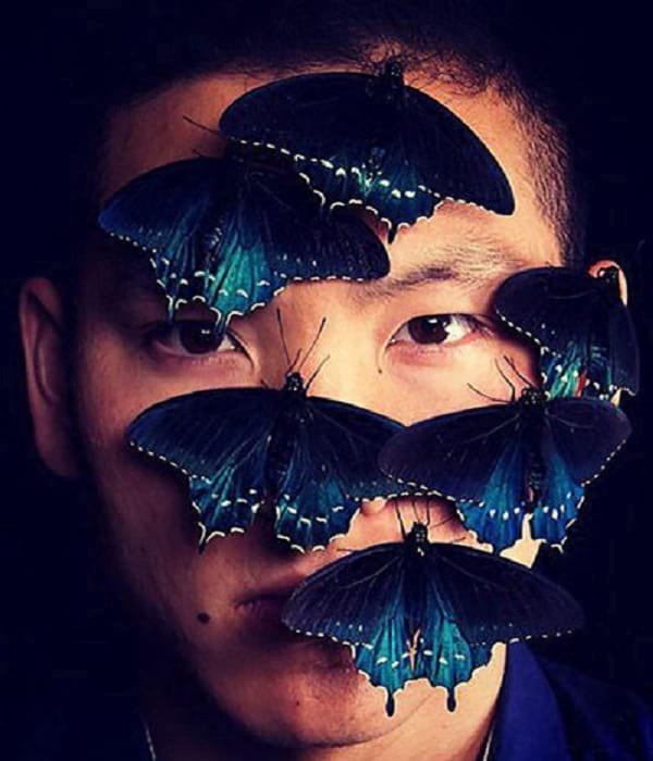 پرورش پروانه در خانه (2)