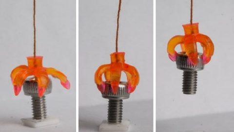 پرینت سه بعدی اشیایی که متناسب با دمای محیط تغییر شکل می دهند!