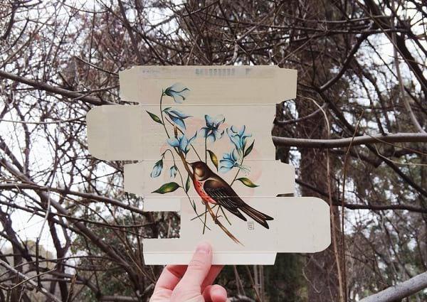 پرنده های آزاد (4)