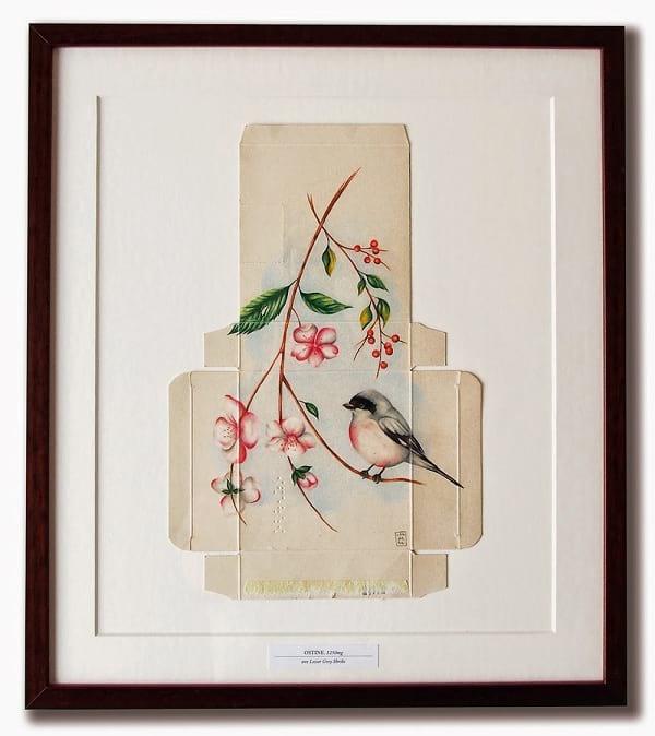 پرنده های آزاد (5)