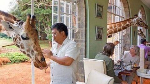 رستورانهای شگفتانگیز در سراسر جهان