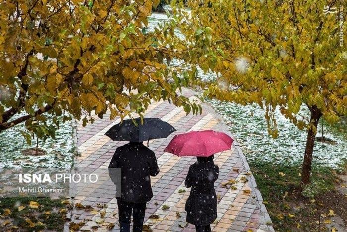 بارش برف و باران (3)