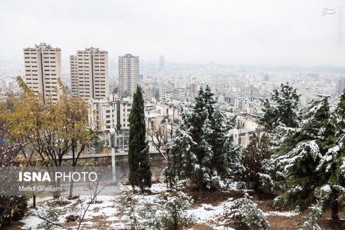 بارش برف و باران (9)