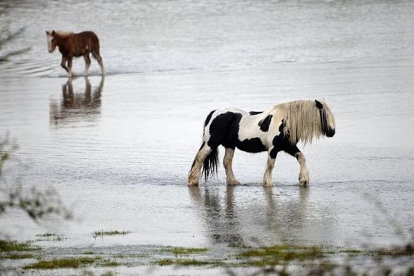 وضعیت شهرهای انگلیس بعد از بارش شدید باران و سیل!