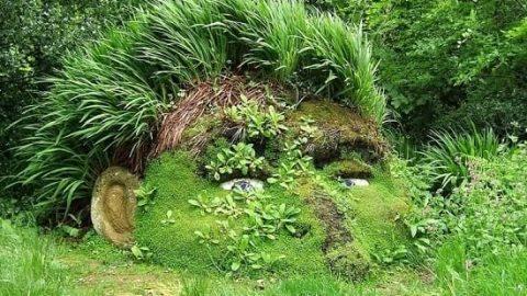 باغ های گمشده «هلیگان»