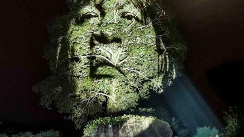 اجرای هنرخیابانی در جنگل آمازون!