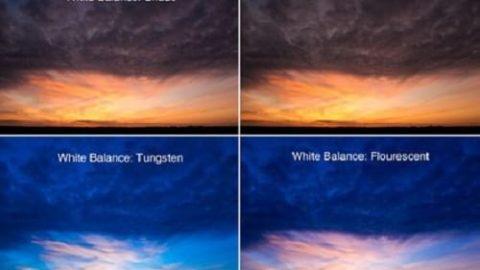 وایت بالانس در عکاسی چیست؟