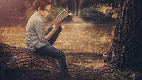 چطور پسر خود را کتابخوان کنید؟