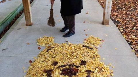 ژاپنی ها از برگ های پاییزی ریخته شده بر روی زمین، اثر هنری خلق می کنند!