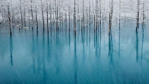 عکس های بسیار سرد از زمستان