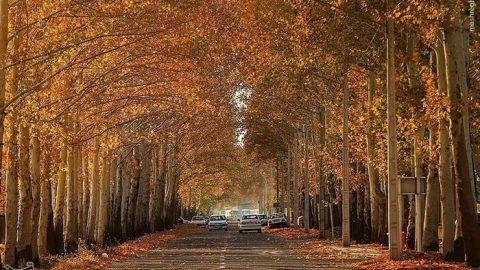 طبیعت پاییزی قزوین