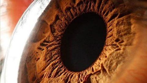 چشم هایی به این زیبایی!