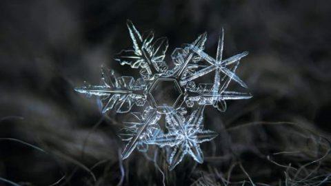 عکس های کلوزآپ زیبا از دانه های برف!