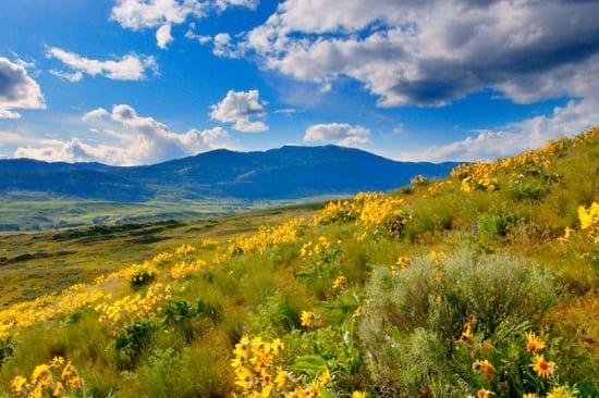 گردشگری سبز و راهکارهایی برای تجربه سفر دوستدار محیط زیست!