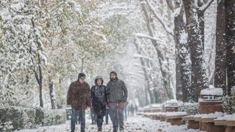 تهران سفیدپوش شد