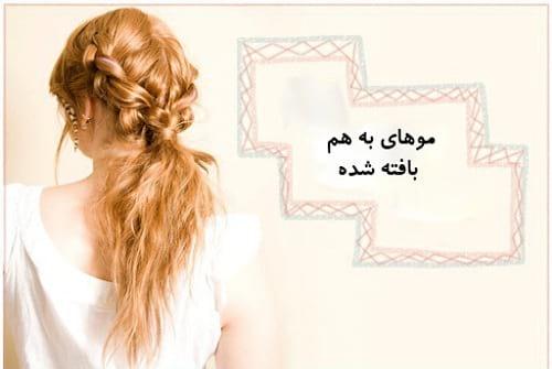 بافت مو (5)