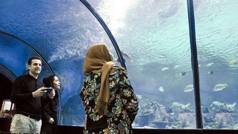 تصاویری از تونل آکواریوم در اصفهان