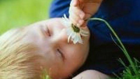 کشف ارتباط از دست دادن حس بویایی با مرگ