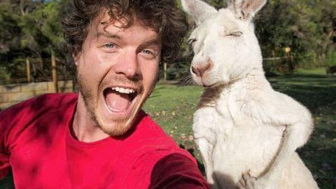 من و حیوانات یه هویی!