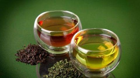 مقایسه خواص چای سبز و سیاه در انواع سرد و گرم