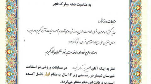 نوجوان موفق و نمونه؛ امیر ستارزاده