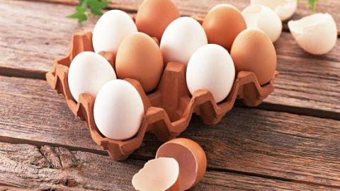 فواید خوردن تخم مرغ برای بدن!