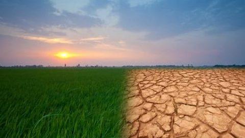 تغییرات آب و هوا سلامت مردم را تهدید می کند