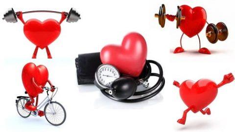 سلامت قلب با ورزش و ویتامین D