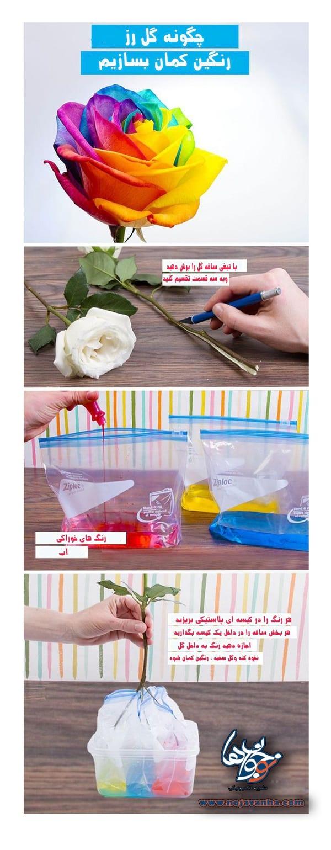 چگونه گل رز رنگین کمان بسازیم؟