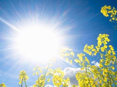 اشعه خورشید (1)