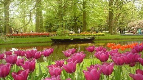 زیباترین و پر بازدیدترین پارک دنیا کجاست؟