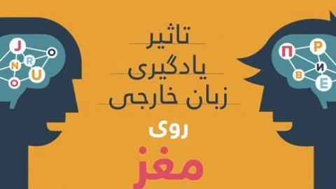 یادگیری زبان خارجی چه تاثیری روی مغز ما میگذارد؟