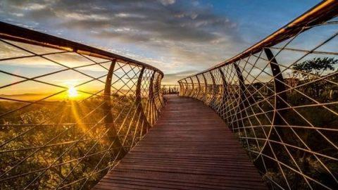 زیباترین و جذاب ترین راه دنیا برای قدم زدن